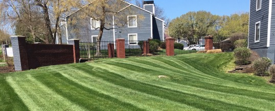 Brummel Lawn, experienced and trusted.